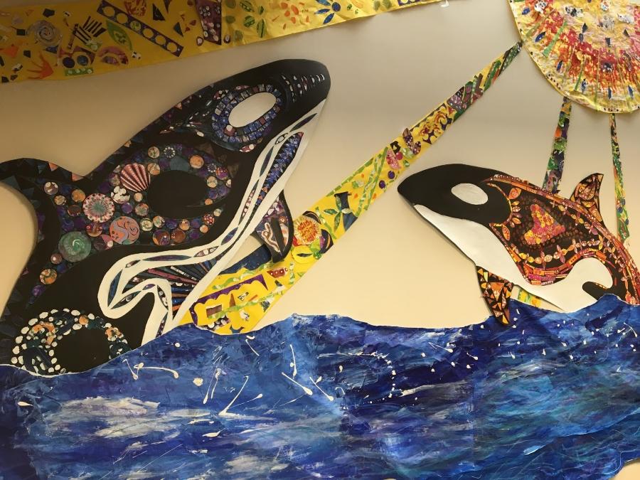ORLA orcas